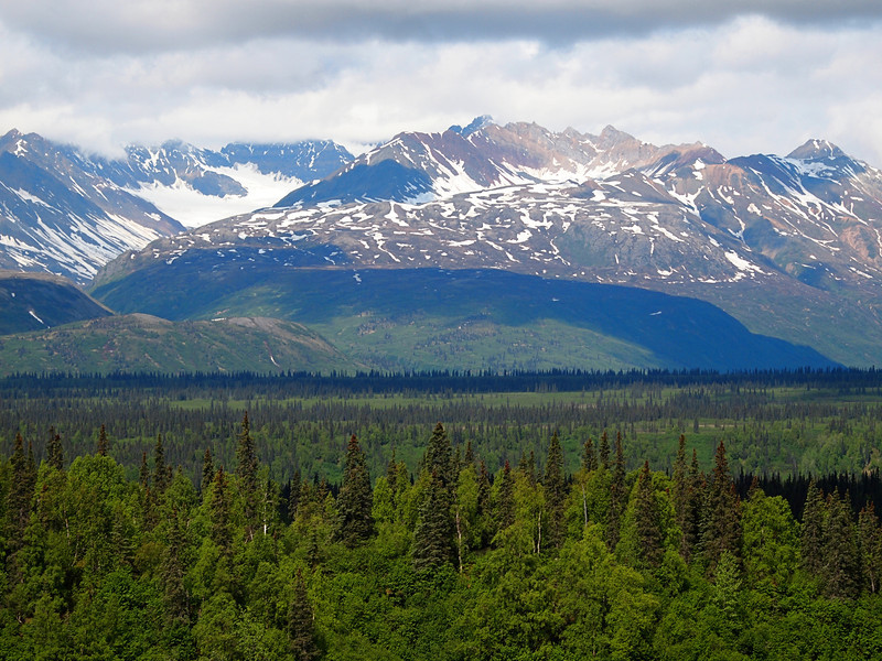 The Alaskan Range from Alaska Highway 3.  By Troy Mellema  June 8, 2011