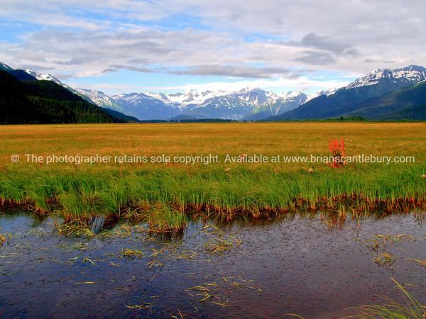 "natural beauty, Alaskan scene. SEE ALSO:    <a href=""http://www.blurb.com/b/893025-north-to-alaska"">http://www.blurb.com/b/893025-north-to-alaska</a>"