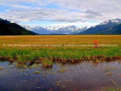 natural beauty, Alaskan scene. SEE ALSO:   www.blurb.com/b/893025-north-to-alaska