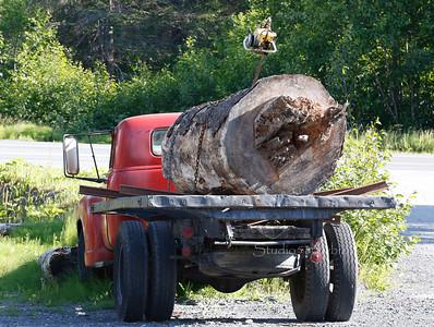 log truck exit glacier 1728