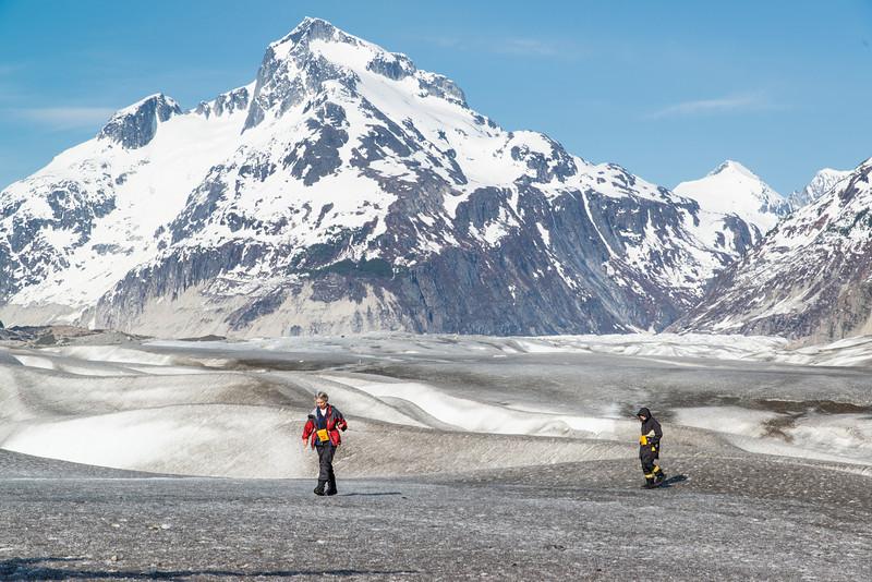 Herbert Glacier, Juneau Icefields