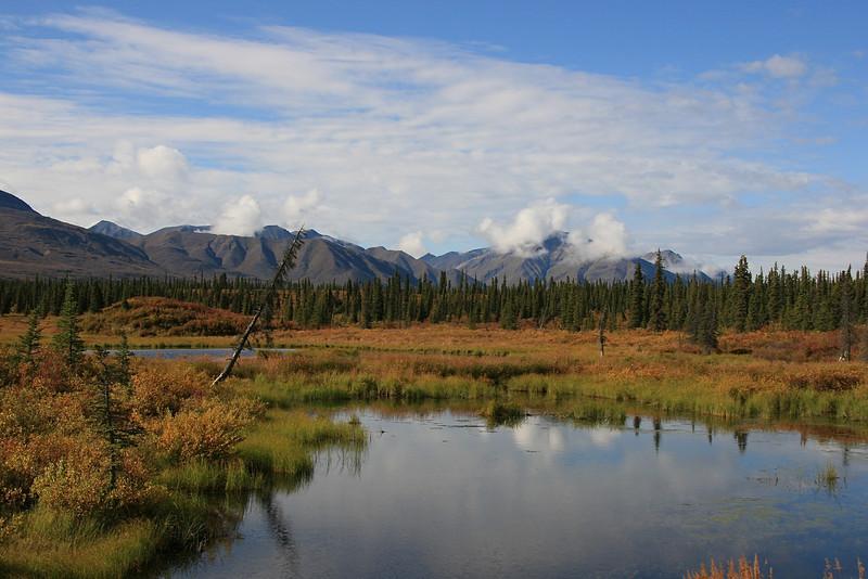 Jack River, Denali Highway, Alaska.