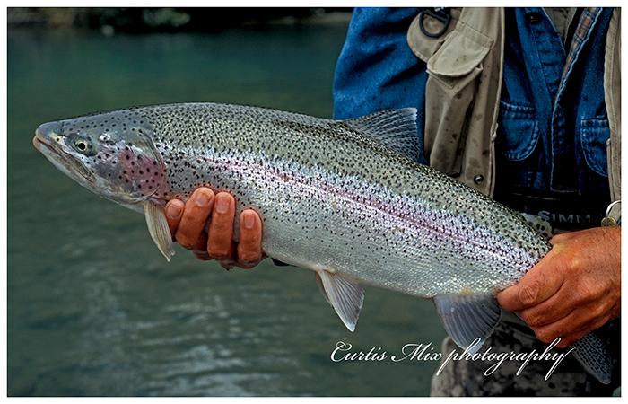 Alaskan rainbow.