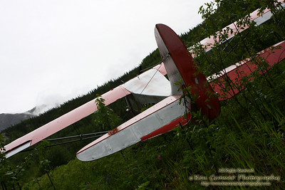 an old bush plane