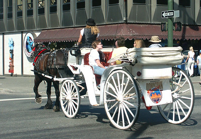 horse drawn carriage in Anchorage Alaska