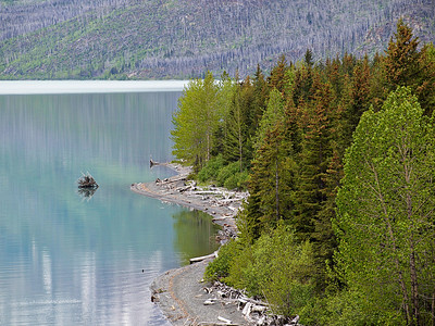 Kenai Lake  By Valerie Mellema  June 12, 2011  Order Code: C19