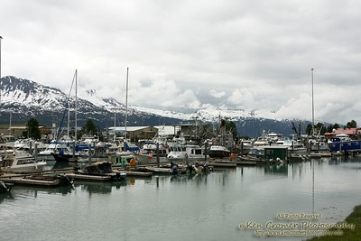 Marina at Valdez Alaska