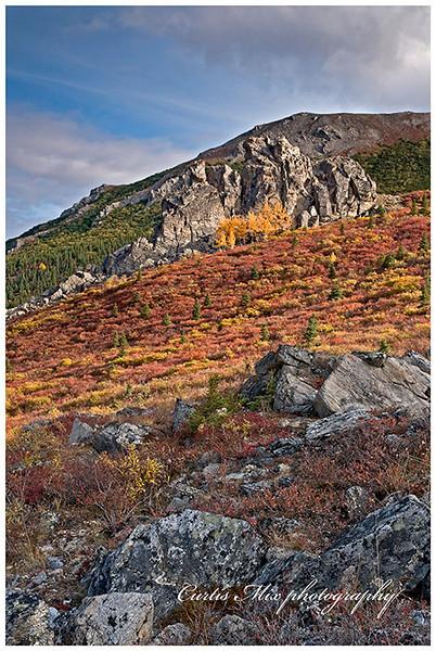 More fall tundra.