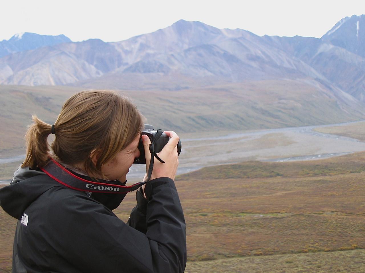 Polychrome Mountain wordt vastgelegd, Alaska.