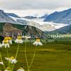 Alaska_20160815-143912_RXX04897