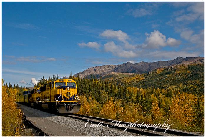 Alaska train.