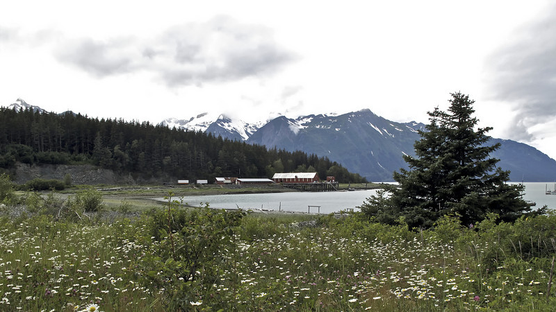 Chilkat Mountains and obsolete cannery. Letnikof Cove, Haines, Alaska.