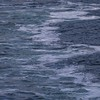 Cruising the Inside Passage from Vancouver to Alaska