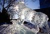 Ice Cat Eats Sun