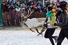 Reindeer Races -- Women