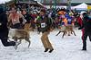 Reindeer Races-Men