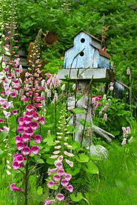 Seldovia Garden