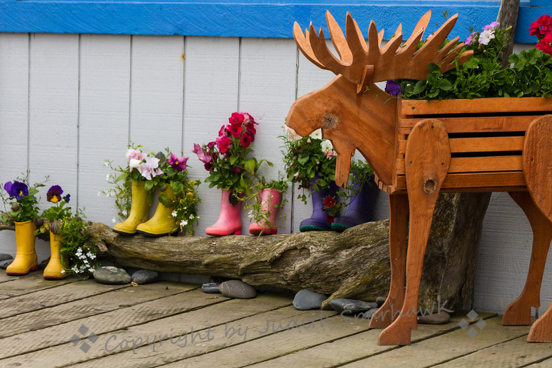 Moose and  Flowers