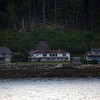 (85)  Houses along banks on way to Ketchikan.