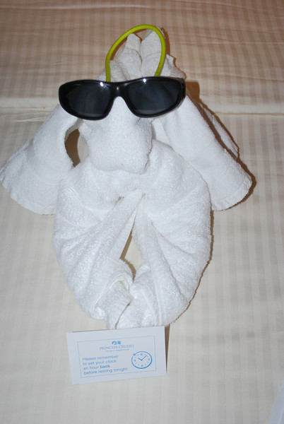 (81)  Our room steward made us decorations out of our towels and left us chocolates each night.  (earned himself a nice tip he did ;-) )