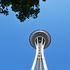 (13)  Top of the Space Needle.