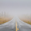 Where foggy path my lead you...no one knows
