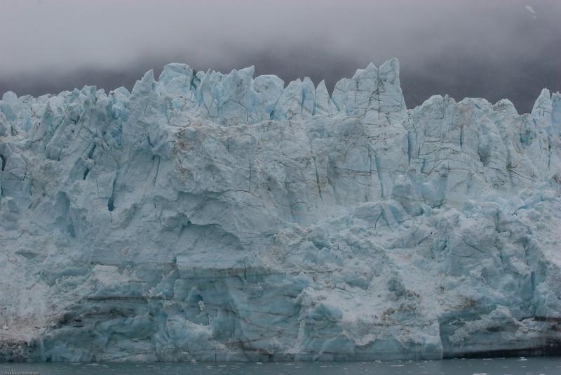 Glacier Bay, Alaska-044