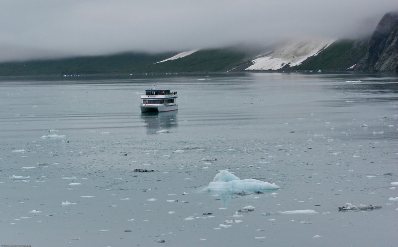 Glacier Bay, Alaska-080