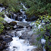 A stream near Mendenhall Glacier (Juneau, Alaska)