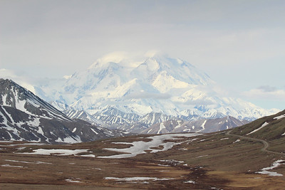 """Take a good look, only 30% of the visitors to the park ever get an unobstructed view of Mt. McKinley, """"The Great One""""."""