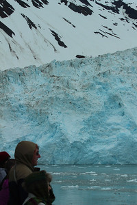 Margerie glacier, another view.