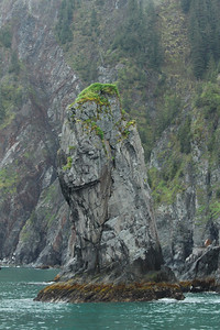 Does anyone else see the face on this rock?