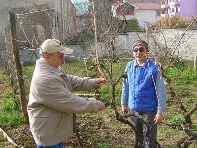 Albania People 2008
