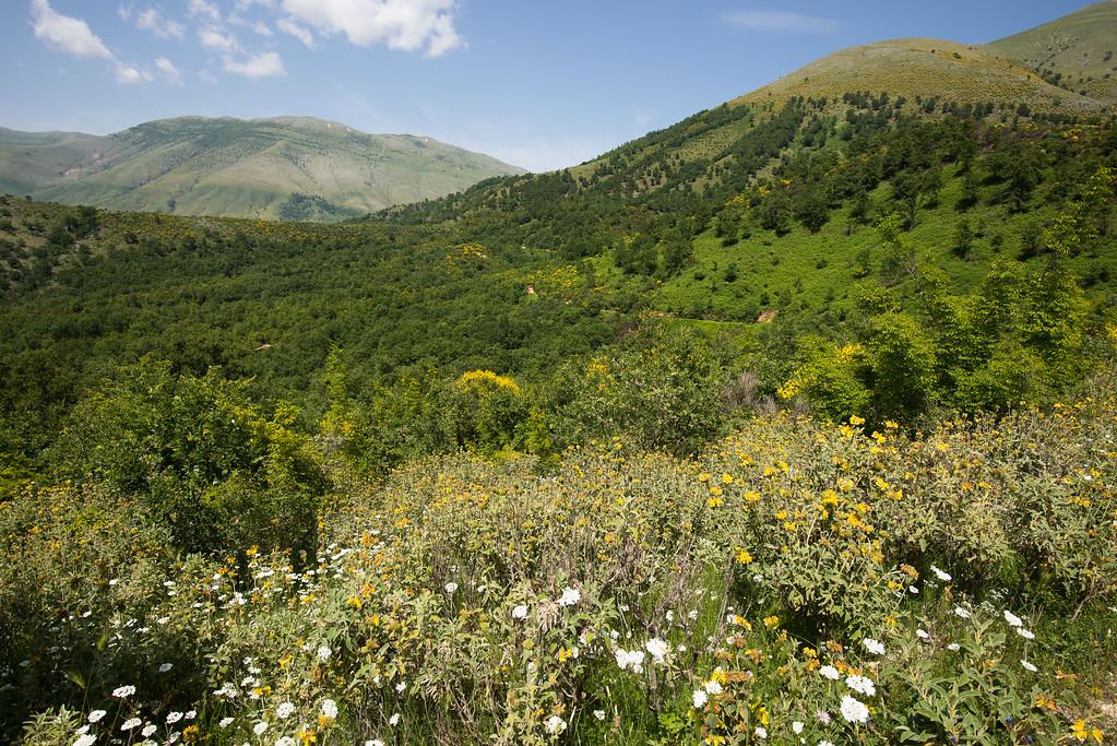 Albania 2014 -172