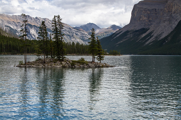 reflecting trees, Lake Minnewanka