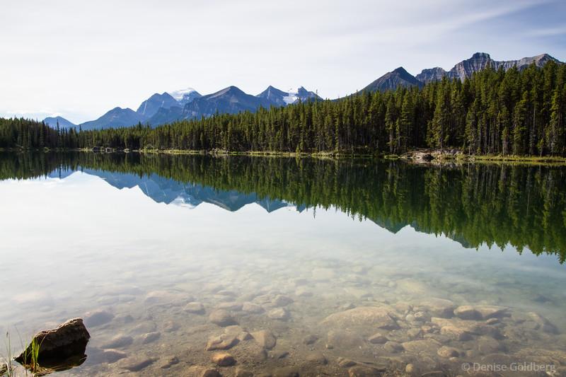 reflections, Herbert Lake