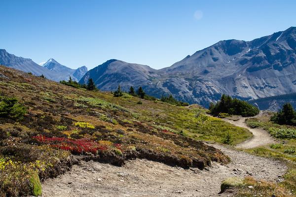 high on Parker Ridge, Banff National Park