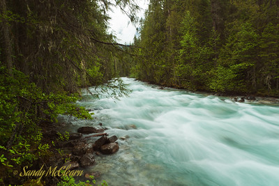 A river near the base of Mount Robson.
