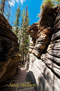 The abandoned river canyon at Athabasca Falls.