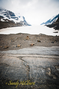 Athabaska Glacier, part of the Columbia Icefield. Note the striations on the surface of the rock.