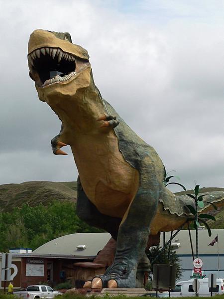 Drumheller, Alberta<br /> <br /> 2005-06<br /> <br /> .