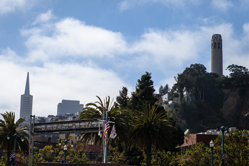 Alcatraz-0494.jpg
