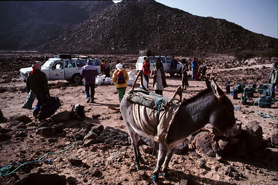 Tassili n'ajjer in Algeria