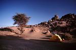 The Algerian Desert