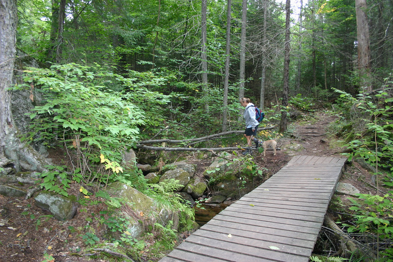 "In ""tricky"" parts of the trail, short bridges have been built."