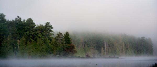 Algonquin;Algonquin;Fog;Trees;Flatwater