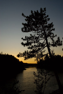 KennedyYear2008;Algonquin;Gold;Night;Sunrise-Sunset;Trees