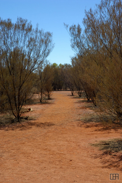 The path between Uluru and the Cultral Centre