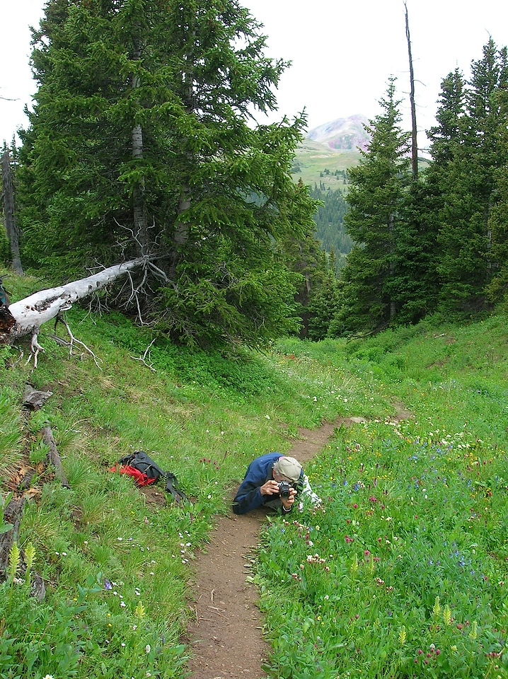 Trail bockage while Nat photographs a flower