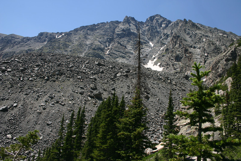 Rock, talus and spruce
